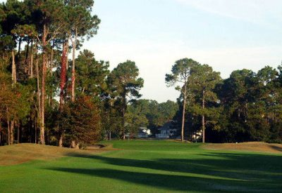 Arthur Hills Palmetto Hall Golf Course